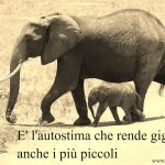 L'elefante e la corda di Paulo Coelho