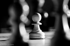 scacchi in bianco e nero