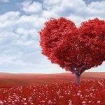 Le persone difficili da amare