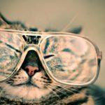 Come migliorare la vista in modo semplice e naturale