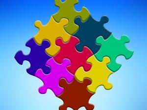 competenze puzzle