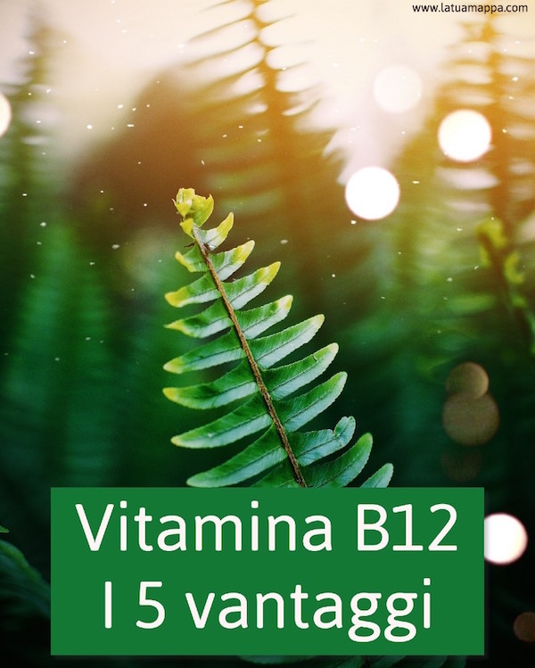 Vitamina B12: i 5 benefici per corpo e mente